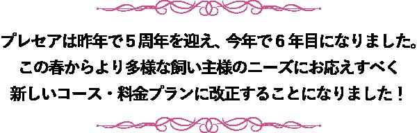 aisatsu4