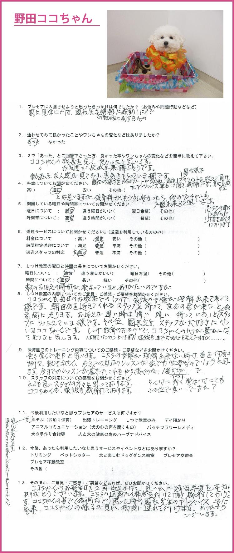 nodakoko2